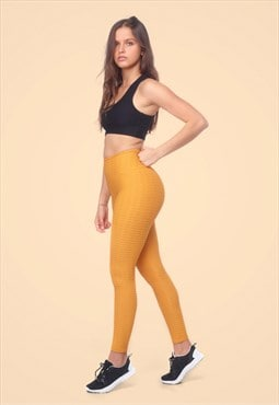 Sportswear Fitness & Yoga Gym Legging Venice